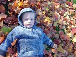 noah-and-the-leaves1