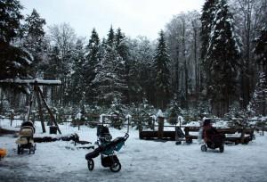 prams-in-the-snow